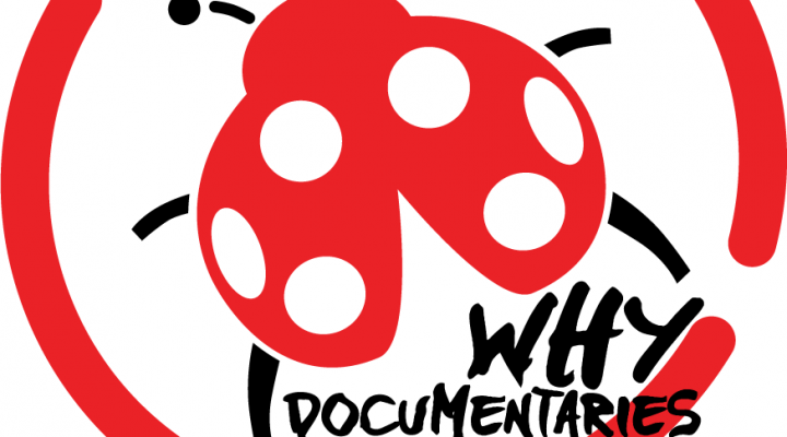 Self Starter - Why Documentaries - Sandra Pires