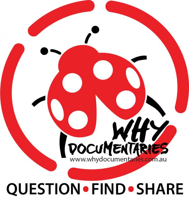 Self Starter - Why Documentaries - Sandra Pires
